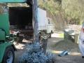 macrae horticultrue tree mulching truck 2
